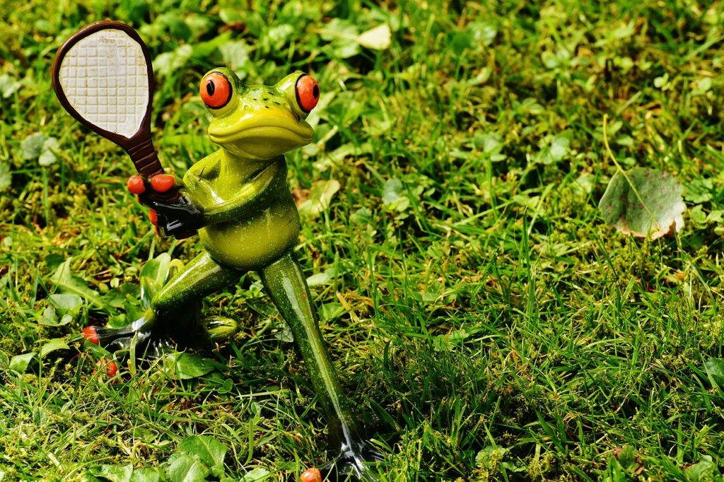 tennis, frog, leisure